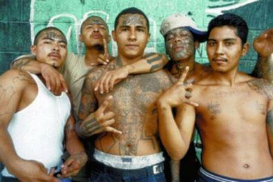 illegalmexicans